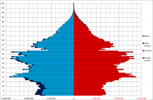 Chinese population by age and sex (demographic pyramid) as of November 1, 2010 (6th national census count)