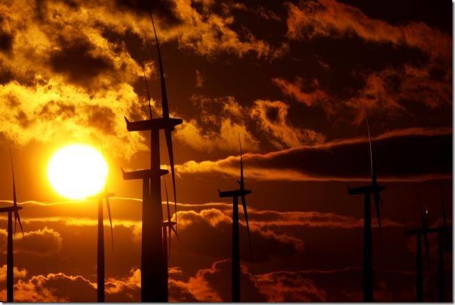 windfarm.jpg.gallery
