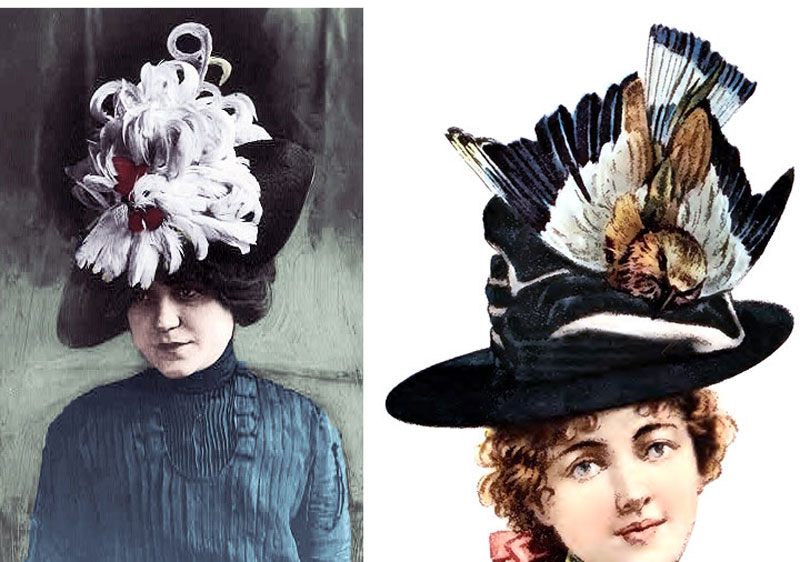 feather-hats