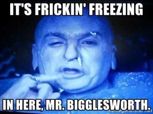 its-frickin-freezing-in-here-mr-bigglesworth.jpg