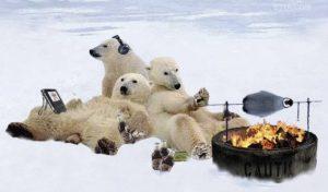 polarbearsroastingpenguin.jpg