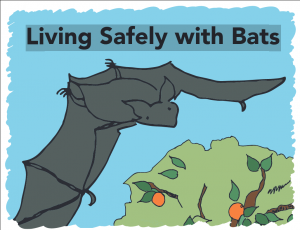 Screenshot 2021-07-21 at 18-51-59 Living-Safely-with-Bats_download pdf.png
