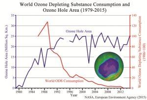ozone1.jpg